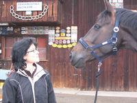 Bilder - Pferde - 2007 - Blicke