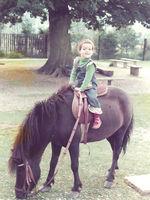 Bilder - Pferde - 1 - 1976 - Zum ersten Mal auf dem Pony 1