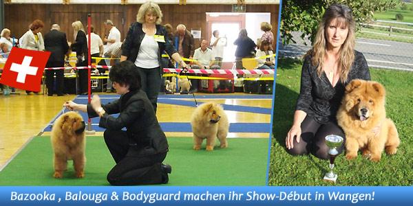 News - Chows - Clubschau 2011 - Spotlight