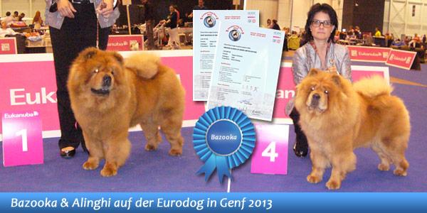 News - Chows - Eurodog 2013 im Spotlight