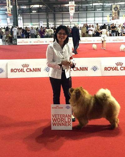 News - Chows - 2015 - Worlddogshow Milano-3
