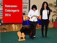 News - Chows - 2016 - Clubschau - Veteranenclubsiegerin
