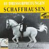 News - Pferde - 2012 - Nationale und regionale Dressurprüfungen Schaffhausen