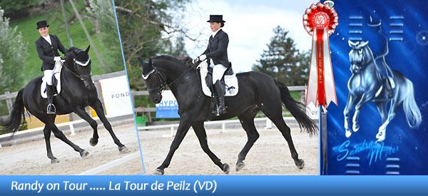 News - Pferde - 2013 - La Tour de Peilz (VD) - Spotlight