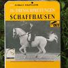 News - Pferde - 2015 - Dressurtage Schaffhausen