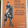 News - Pferde - 2016 - Holziken-2