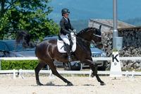 Unsere Pferde - Bilder 2015-6