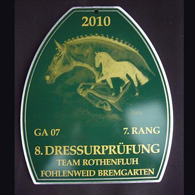 News - Pferde - 2010 - Dressurprüfung - Team Rothenfluh Fohlenweid Bremgarten (2)