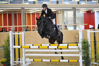 Bilder - Pferde - 2008 - Rendezvous Aarau 2