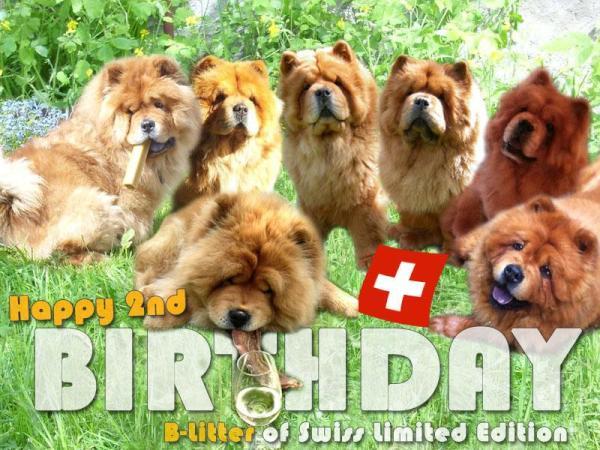 B-Wurf: Der 2. Geburtstag