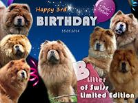 B-Wurf: Der 3. Geburtstag