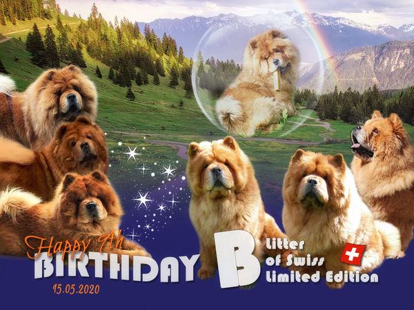 B-Wurf: Der 9. Geburtstag