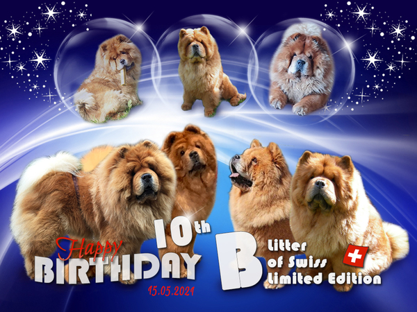 B-Wurf: Der 10. Geburtstag
