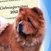 News 2012 - ACC Clubsiegerschau 2012
