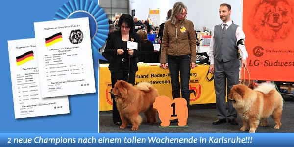 News - Chows - 2014 - Karlsruhe 2014 (Bazooka) Spotlight