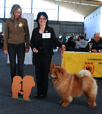 News - Chows - 2014 - Karlsruhe 2014 (Bazooka)-2