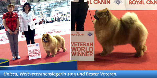 News - Chows - 2015 - Worlddogshow Milano - Spotlight