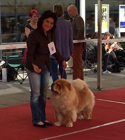 News - 2016 - Ludwigshafen
