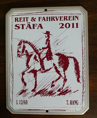 News - Pferde - 2011 - Dressurprüfungen Rüti