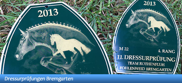 News - Pferde - 2013 - Dressurprüfungen Bremgarten - Spotlight
