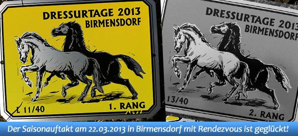 News - Pferde - 2013 - Dressurtage des Kavallerievereins