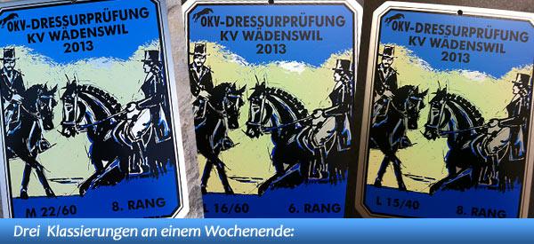 News - Pferde - 2013 - OKV-Dressur-Ausscheidung Wädenswil - Spotlight