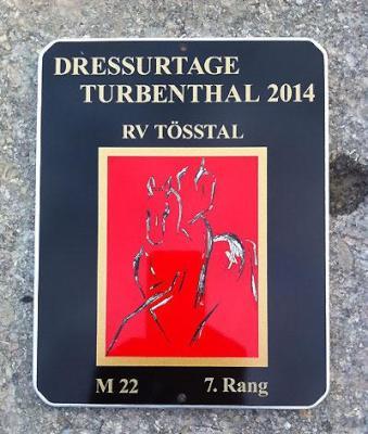 News - Pferde - 2014 - Dressurtage Turbenthal