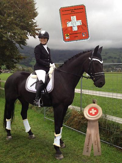 News - Pferde - 2016 - Schweizermeisterschaft in Werdenberg