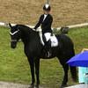 News - Pferde - 2016 - Schweizermeisterschaft in Werdenberg-4
