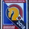 News - Pferde - 2018 - Dressurtage Birmensdorf ZH