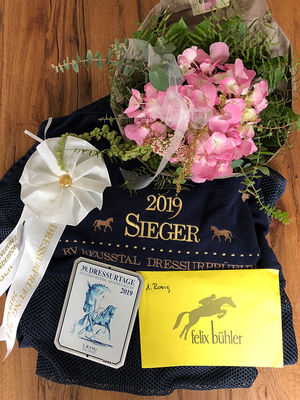 News - Pferde - 2019 - Dressurtage Niederrohrdorf-3