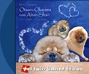 Unsere Hunde: Otaaru Okajama von Altun-Shan