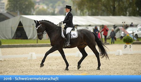 Unsere Pferde - Bilder - Schweizermeisterschaft 2016