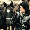 Unsere Pferde - Bilder 2016-14