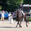 Unsere Pferde - Bilder 2017-3