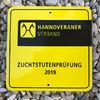 Unsere Pferde - Bilder 2019 - Stutenleistungsprüfung Blaubeuren (D)-12