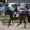 2020 - Pferdebilder - August - Bülach-2