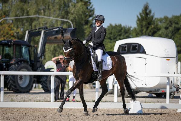 2020 - Pferdebilder - Juni - Fürstin und Vaiana im Spotlight