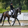 2020 - Pferdebilder - September-3