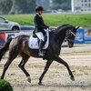 2020 - Pferdebilder - September-5