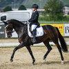 2020 - Pferdebilder - September-6