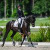 2021 - Pferdebilder - Juni - Grüningen - Fürstin