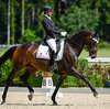 2021 - Pferdebilder - Juni - Grüningen - Dreamy-9