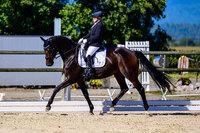 2021 - Pferdebilder - September-6