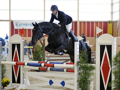 News - Pferde - 2008 - Rendezvous Aarau 2