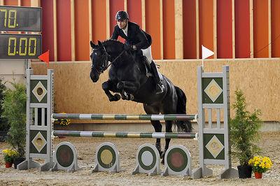 Bilder - Pferde - 2008 - Rendezvous Aarau 1