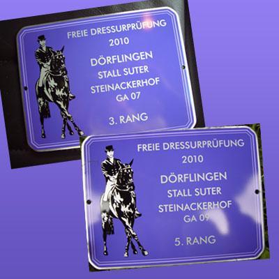 News - Pferde - 2010 - Freie Dressurprüfung - Stall Suter Dörflingen SH