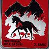 News - Pferde - 2010 - Dressurprüfung Kavallerieverein Schwyz/Ibach