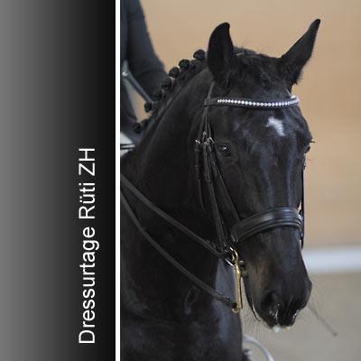 News - Pferde - 2010 - Dressurtage Rüti ZH