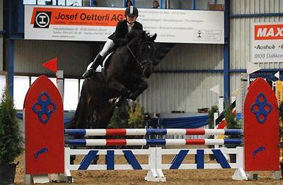 News - Pferde - 2008 - Rendezvous Buchs